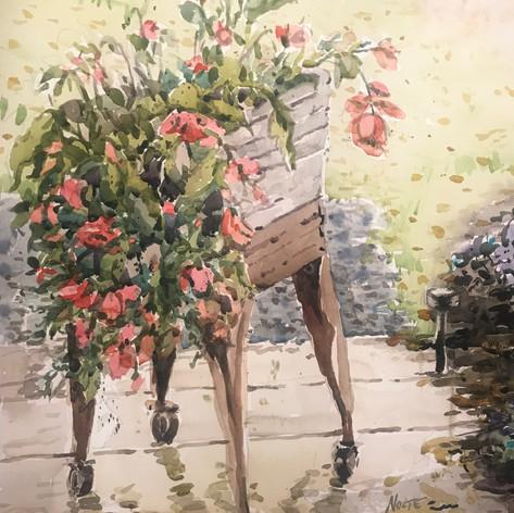 Begonia Cart