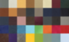 leather tone.jpg