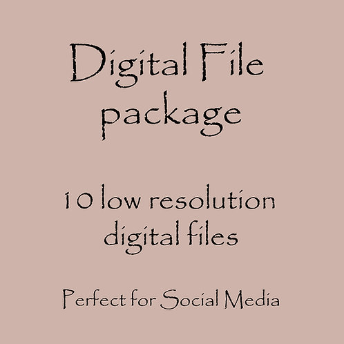 Digital photo package - 10 low resolution photos