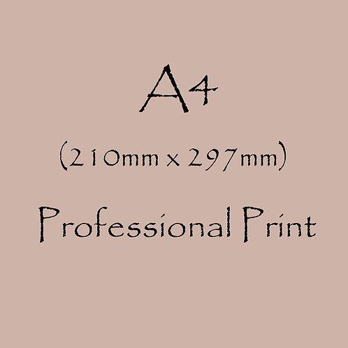 A4 Professional Print