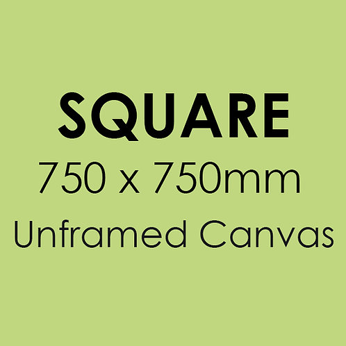 SQUARE 750mm x 750mm unframed canvas