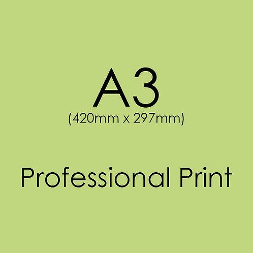 A3 Professional Print