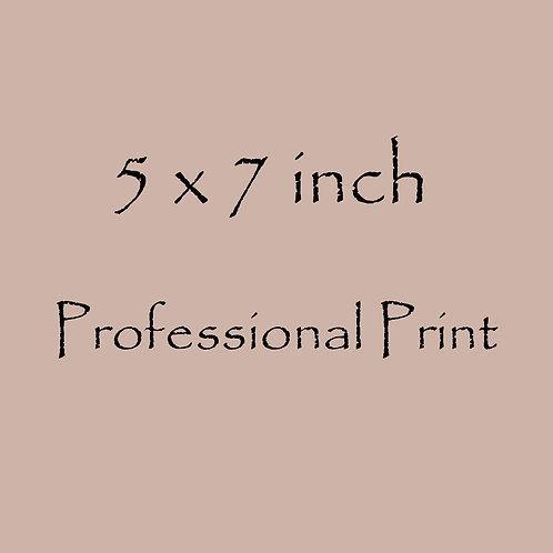 5 x 7 inch Professional Print