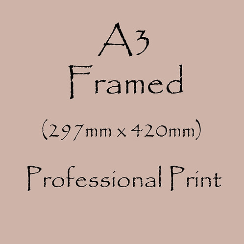 A3 FRAMED Professional Print
