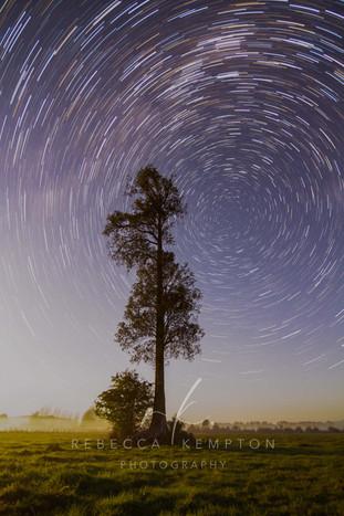Greytown farm star trails.JPG