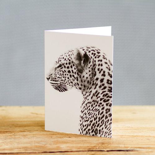 Leo leopard - card