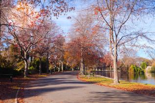 Masterton Park 1.jpg