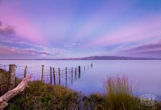'Lake Wairarapa Light'