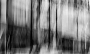 _MG_1458-Edit-Edit.JPG