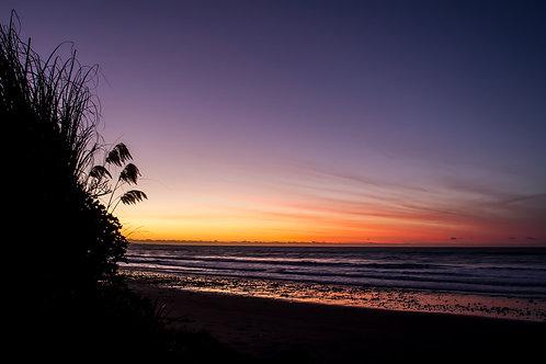 Kiwi beach life