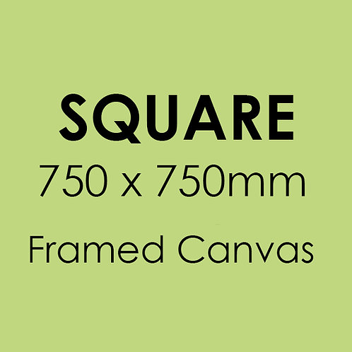 SQUARE 750mm x 750mm Framed Canvas