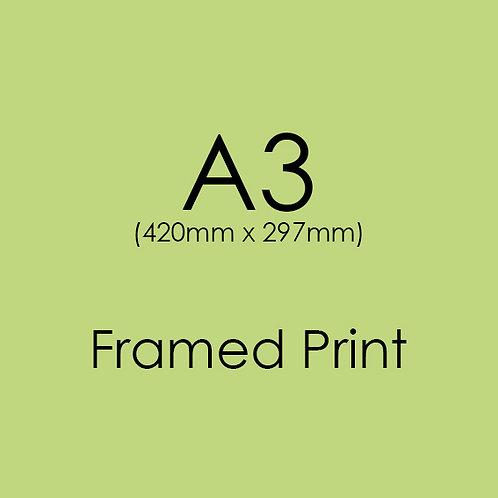 A3 FRAMED Professional Print