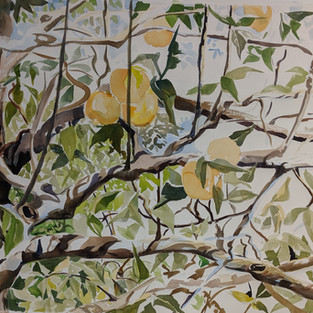 watercolor apple branches.jpg