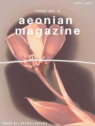 Issue No. 4 Cover.png