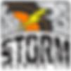 Storm_FV.png
