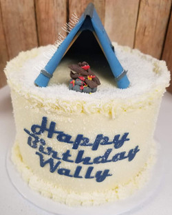 WINTER CAMPING TRIP BIRTHDAY CAKE