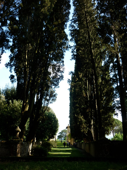 Gamberaia - Bowling green - 06/2011