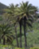 IMGP3041 - Version 3.jpg