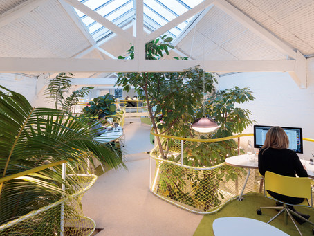8 Post-Covid Office Design Strategies to Increase Employee Productivity