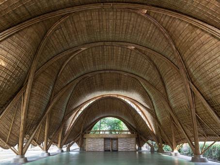 How IBUKU made an organic gymnasium with computational bamboo engineering