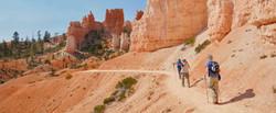 Roadrunner Expeditions_Home Page_Hoodoos