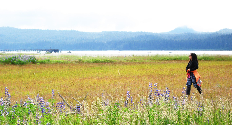 Wild Alaska Beach Meadow.jpg