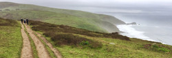 California Coast Point Reyes 2.jpeg