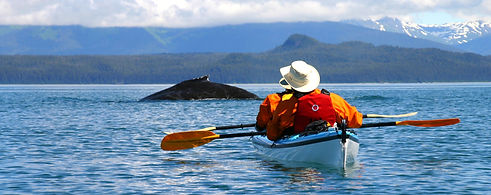 Alaska by Sea Humpback with Kayak.jpg