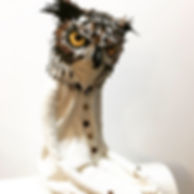 owl 2019.jpg