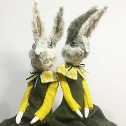 grey rabbits 2020