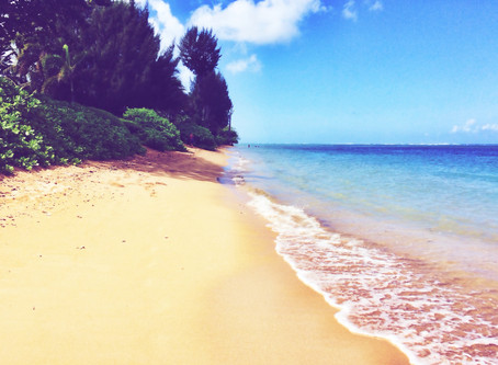 Hawaii: A Pacific Kind of Love Part: 2