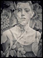 Fragile Like A Flower
