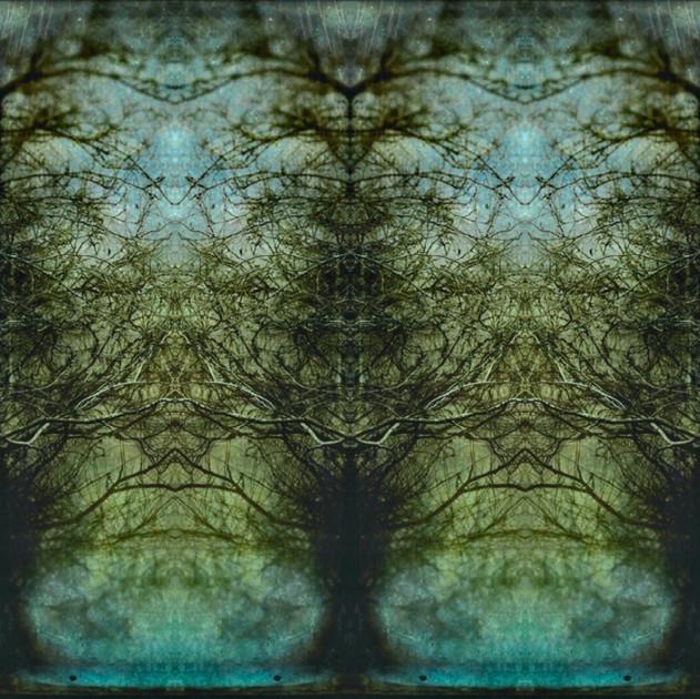 The Beautiful / Terrible  Maze Between Us