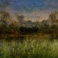 Rio Grande River Study