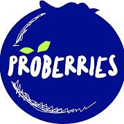 Proberries log.png