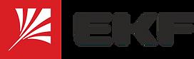 ЭКФ logo_goriz.png