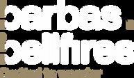 logo-500x289.webp