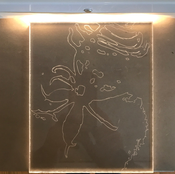 Threshold: light drawing