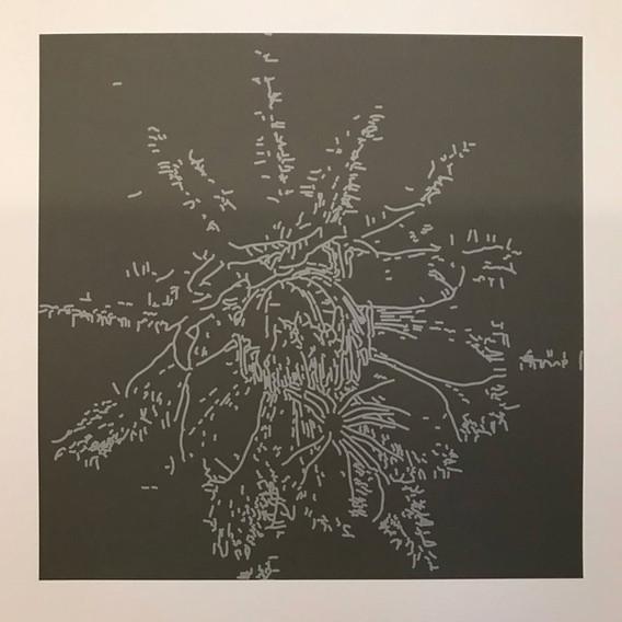 Threshold Drawings: Grays 01