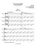 Satie 3 Gymnopedie Three Gymnopedie bassoon quartet 4 bassoons bassoon ensemble bassoon music