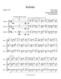 Kalinka Larionov bassoon trio bassoon music