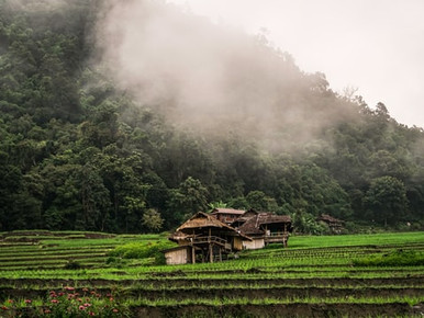 What's in Northern Thailand?