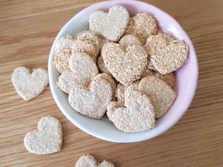 How to make yummy food for your furbabies
