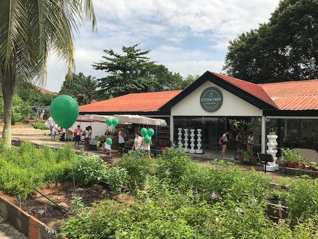 Citizen Farm is your source for fresh and sustainable produce in SG