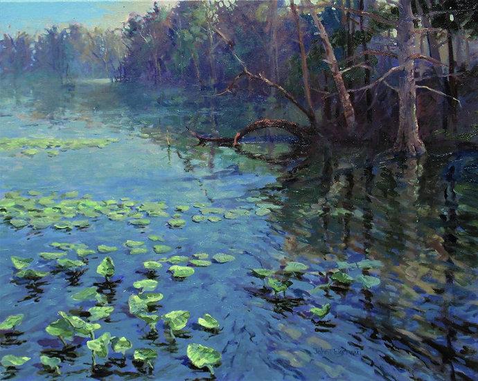 Lily Pad Pond by John Eiseman