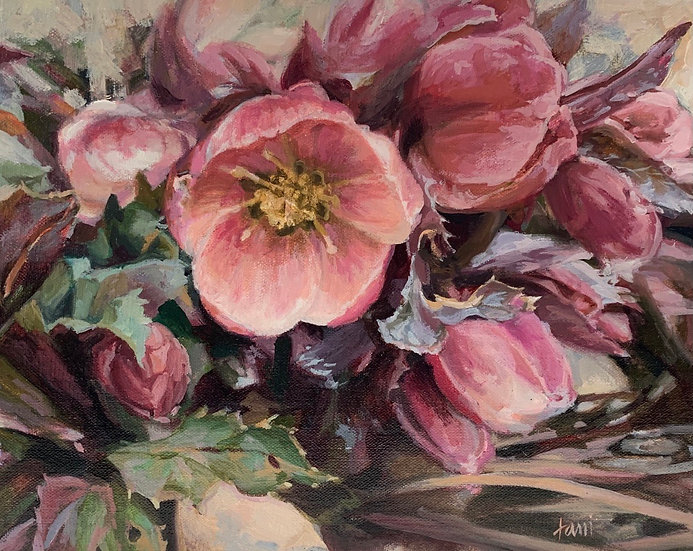 Hellebore by Lani Browning