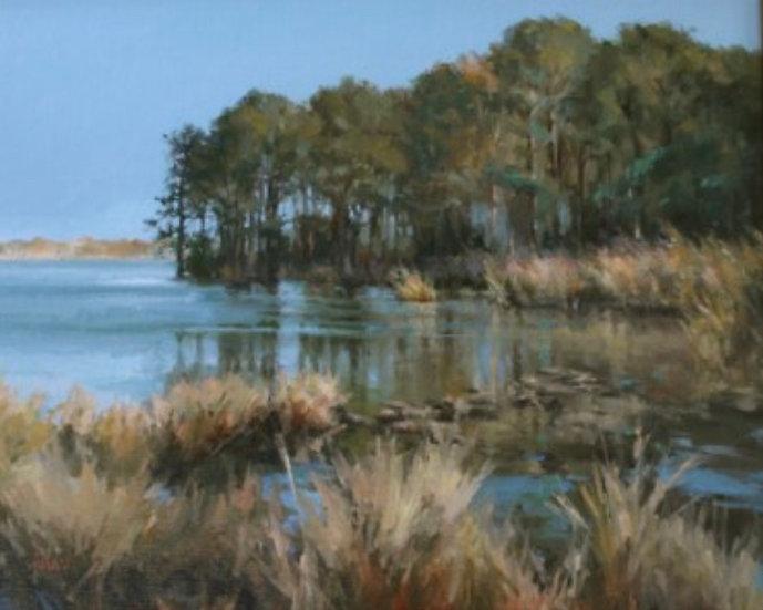 Blackwater Marsh by Lani Browning