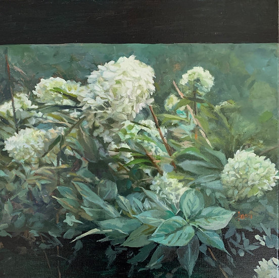 Annabelle Hydrangea by Lani Browning