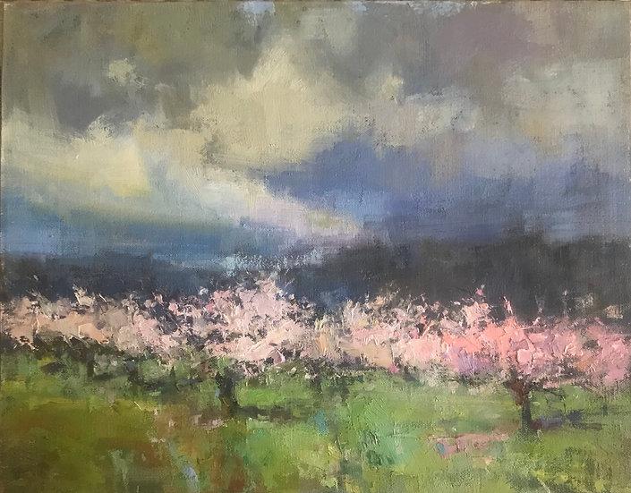 Springtime Promise by Valerie Craig