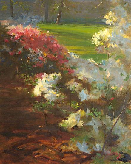 Rhythmic Flowers by Cesar Jerez